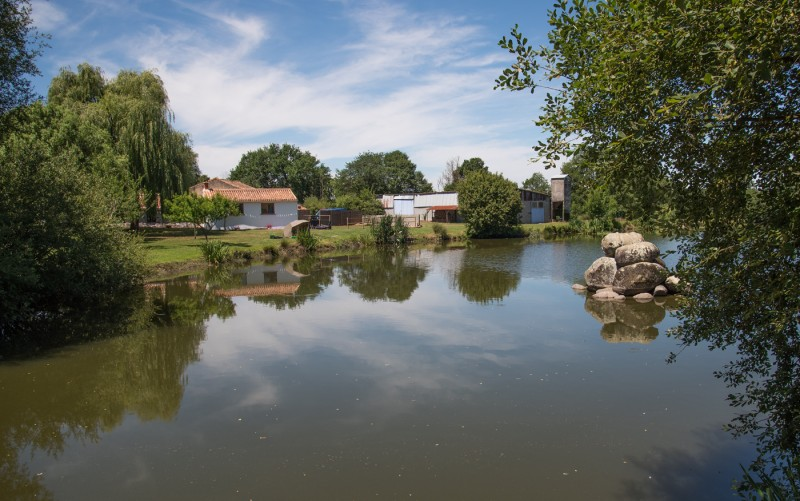 carp fishing in france with accommodation at Kingfisher Lake