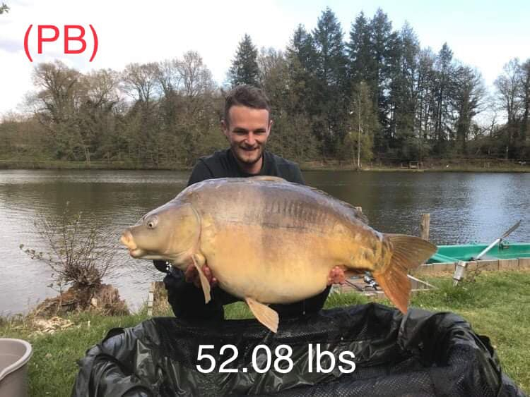 big 50lb carp at Golden Oak