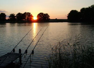HOW DO YOU CHOOSE A CARP FISHING SWIM