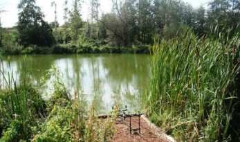 buying a carp lake in france