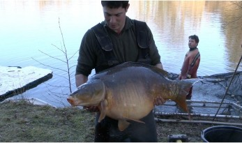 golden oak carp lake gets netted