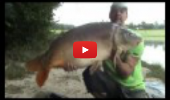 VIDEO OF JUNE '08 CARP SESSION ON BOUX