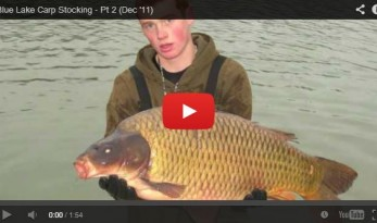 blue lake carp stocking