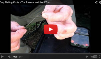 CARP FISHING KNOTS – THE PALOMAR AND THE 5 TURN GRINNER