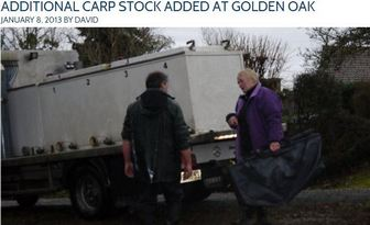 ADDITIONAL CARP STOCK ADDED AT GOLDEN OAK