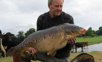 Does Low Air Pressure Influence Carp To Feed Angling