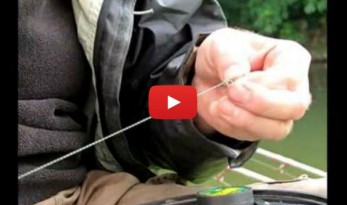 the barbel rig fishing