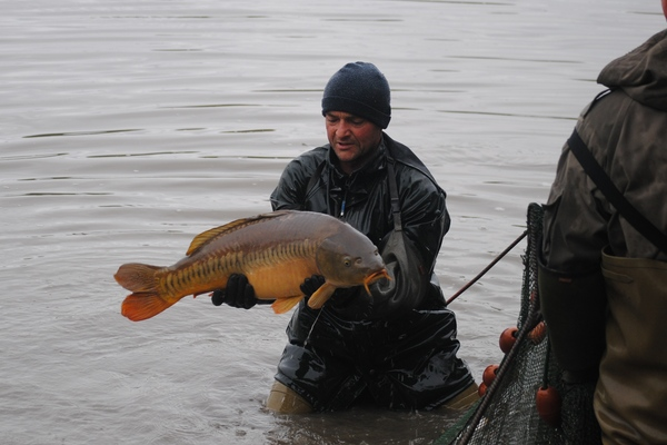 Brocard Carp Fishing in France