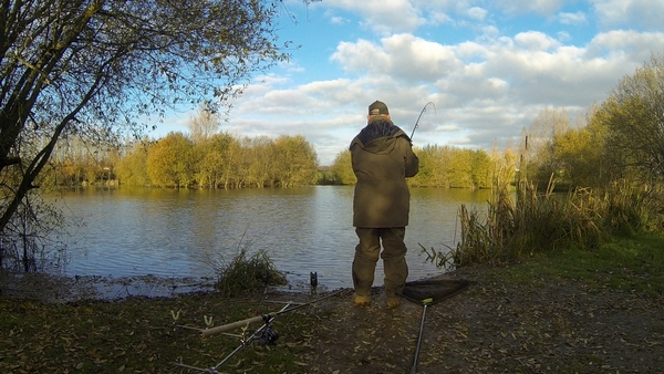 lillypool winter carp fishing rig