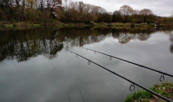 Winter Carp Fishing Blog
