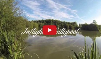 Lillypool French Carp Fishing