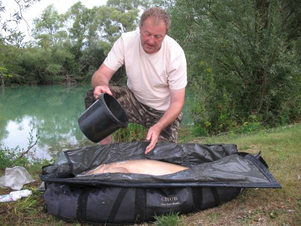 This carp is ready for its photo in a wet sling on carp mat
