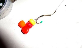 carp fishing hook baits what to use