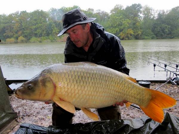 Carp caught with plastic boilie