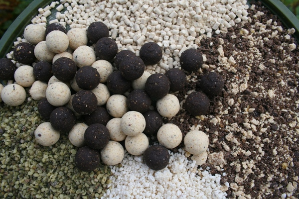 what carp baits to use in cold weather