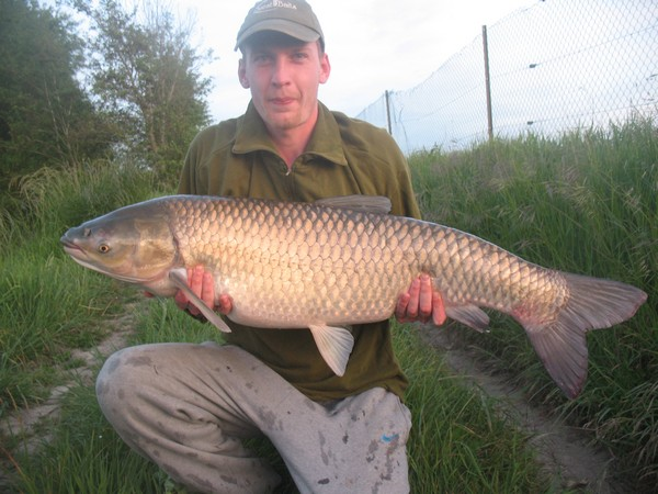 Grass Carp at Beaurepaire Carp Fishing Lake in France