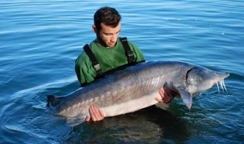Vaumigny Big Sturgeon Fishing Lake In France