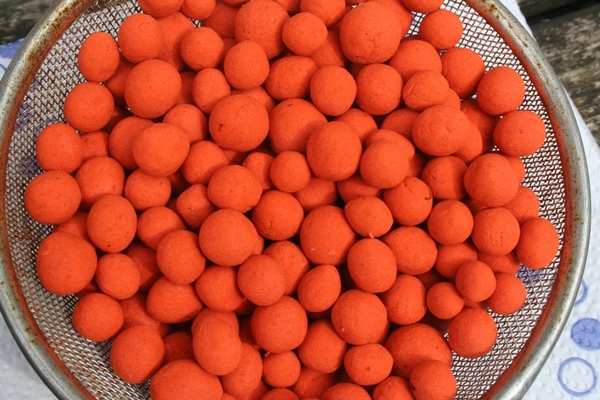 Making your own carp fishing wafter baits