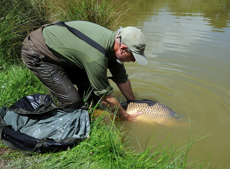French carp fishing at Glehias