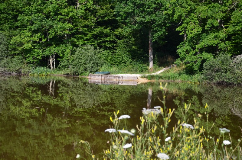 How to create the perfect carp fishery in France