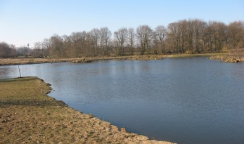 How to make a successful carp fishing lake
