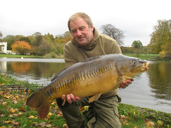 A late Autumn Linear in full colour