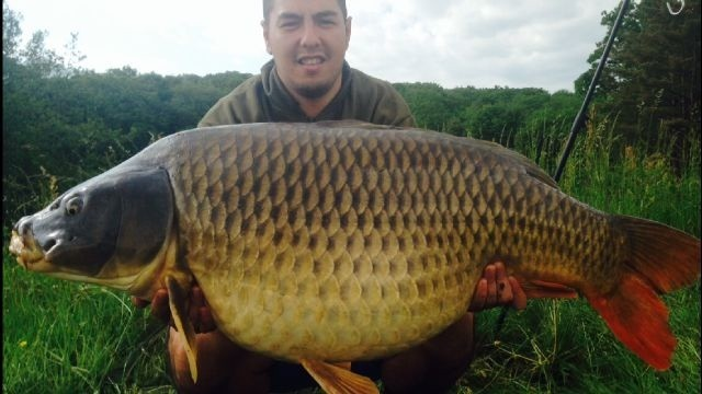 Want A 50lb Common Carp Angling Lines Blog