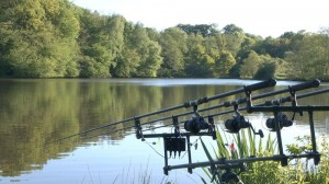 french carp fishing holidays at Alder Lake