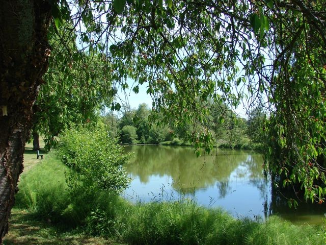 Owning a carp fishing lake in France