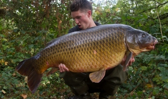 Old Oaks Huge 62lb Common Carp