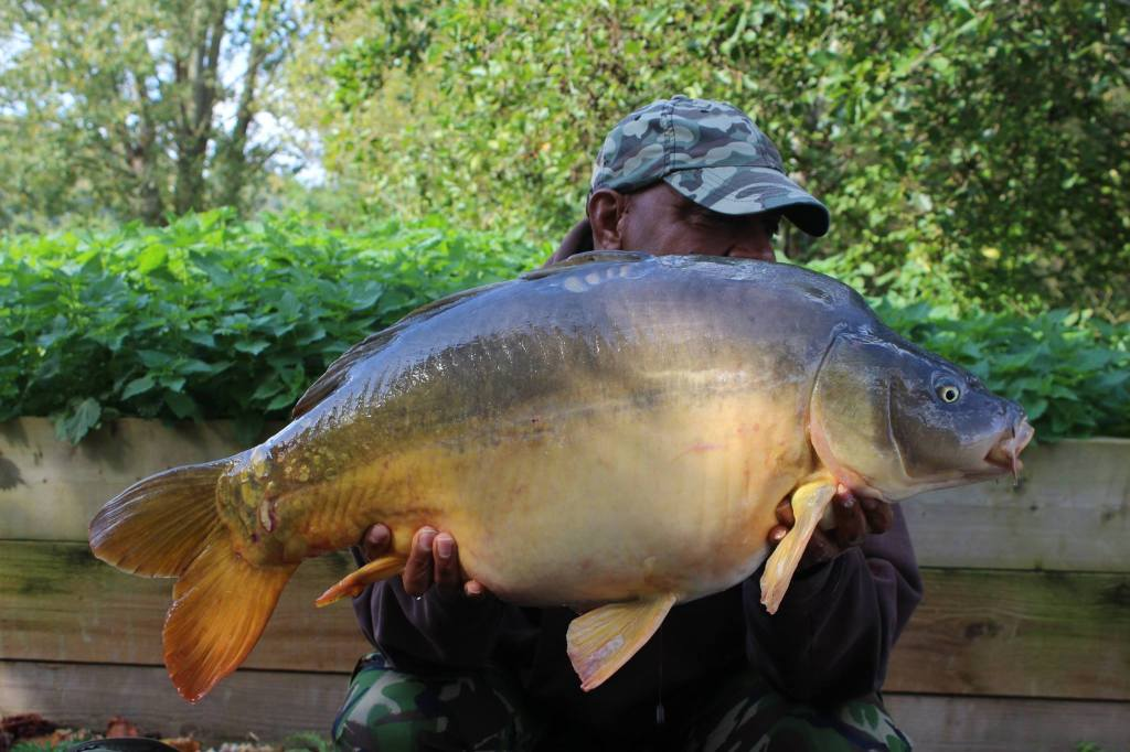 Molyneux French Carp lake Close To Calais