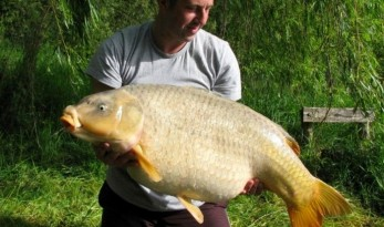 big ghost carp fishing in france