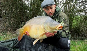 villefond French mirror carp