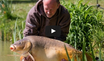 Lillybelle carp fishing in france