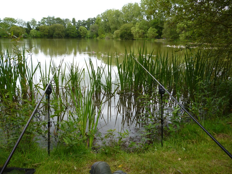 french carp fishing at Lillybelle