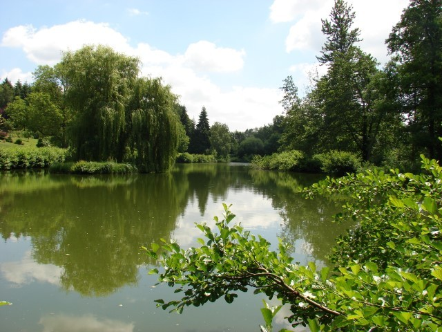 french carp fishing at Bletiere