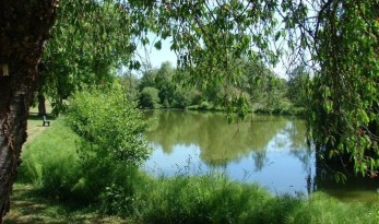 carp fishing in france at Bletiere