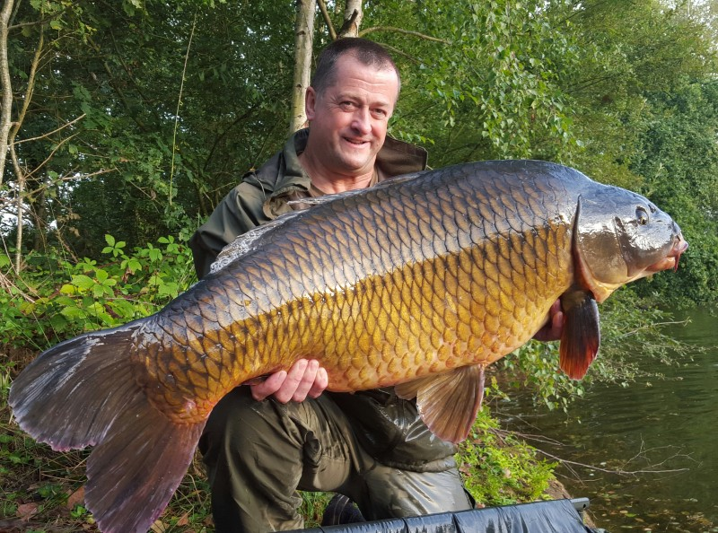 old oaks big French carp 60lb