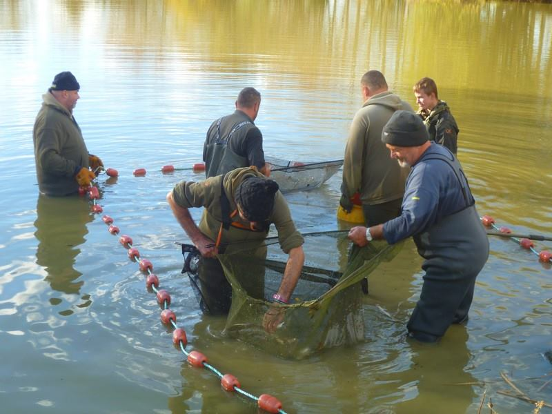 netting at lillypool carp lake in France