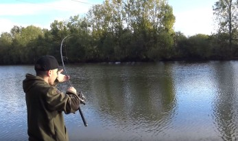 video old oaks carp fishing
