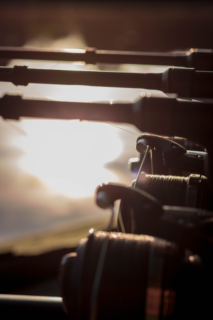 Carp fishing rods at sunset by Mike Linstead