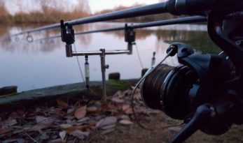 french carp fishing winter