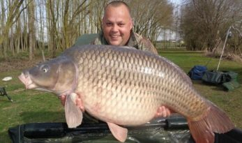 lillypool big common carp in France