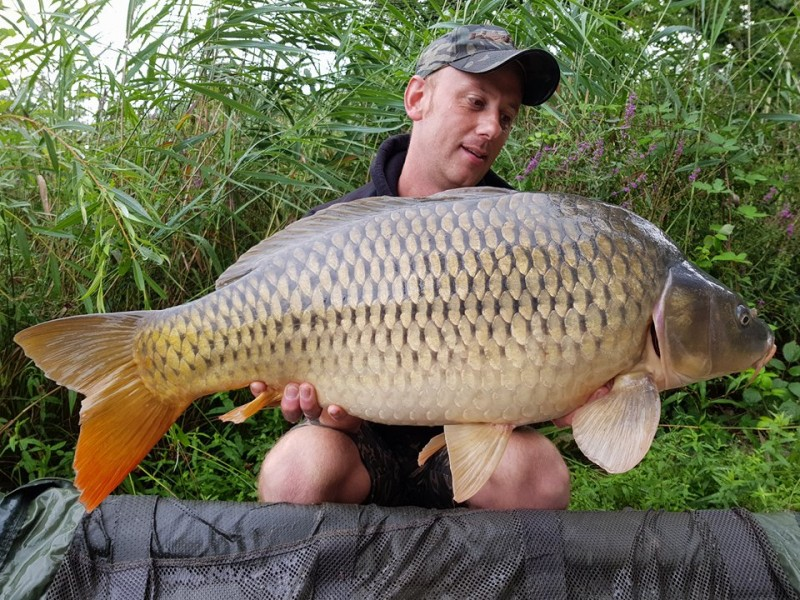 french carp lake barringtons
