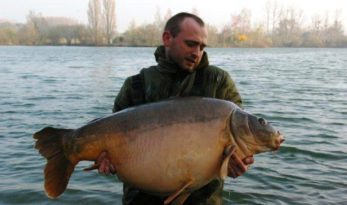 big carp at laroussi
