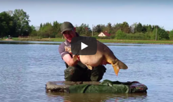 etang du furet tips and tactics