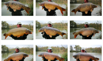 jonchery 7 carp fishing in france