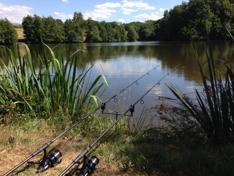 French carp fishing at Alder
