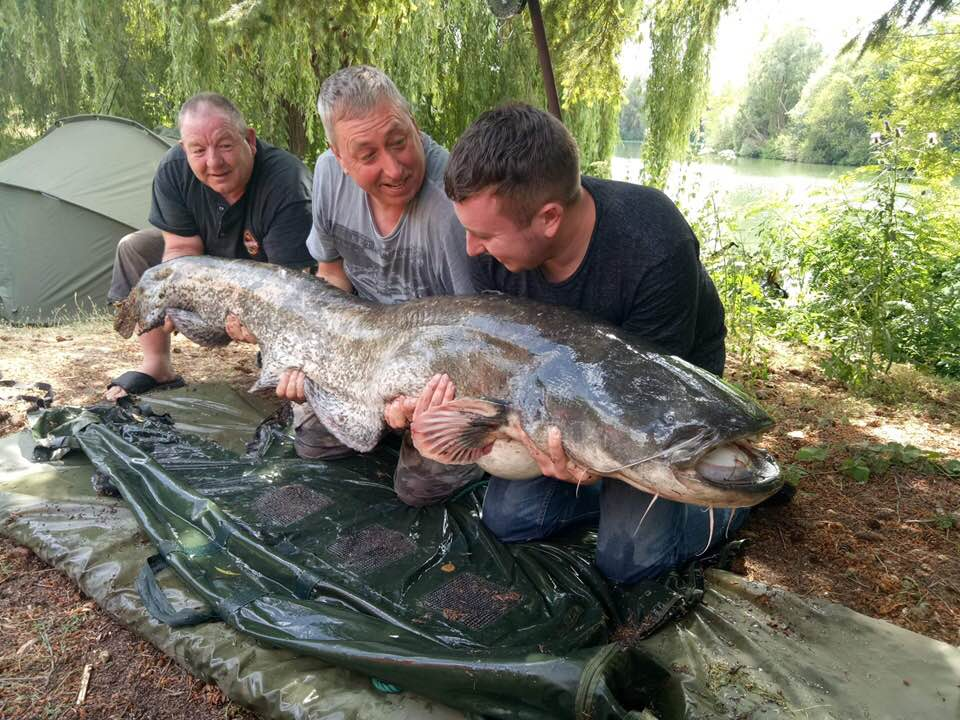 molyneux big catfish and carp france