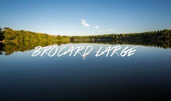 brocard carp fishing france
